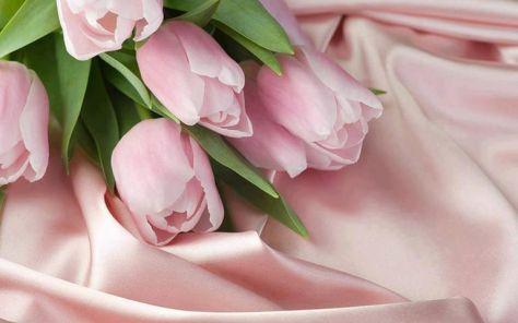 roz triantaffylakia